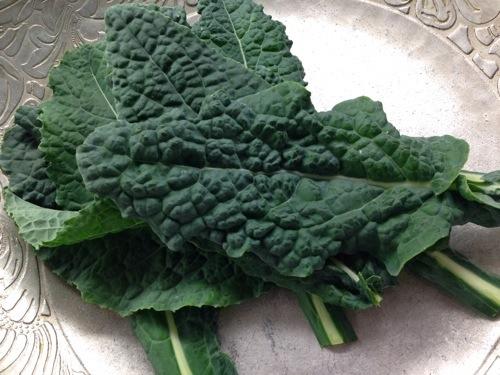 garden kale.jpg