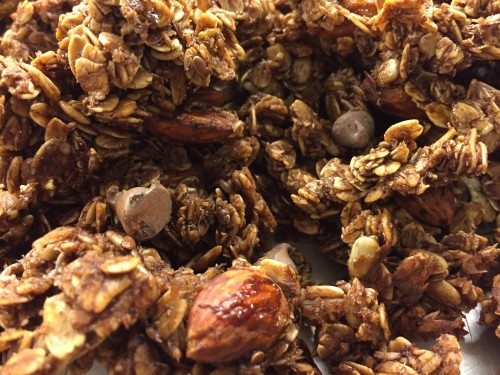 chocolate granola close up