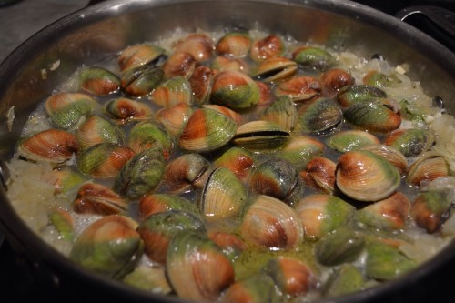 clams in pan.JPG