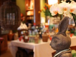 napa style bunny