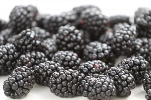 blackberrycloseup.jpg