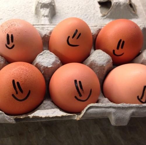 egg smiles