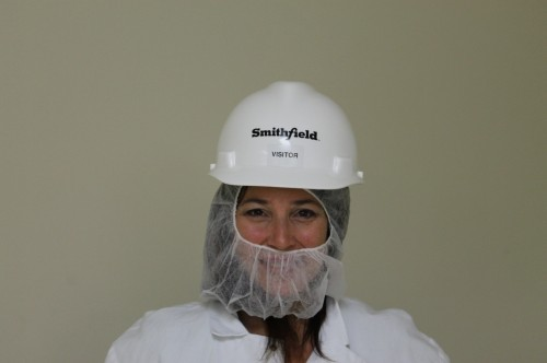 smithfield  head -chin cover