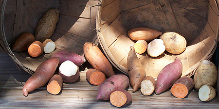 sweet-potato-basket1 sliced