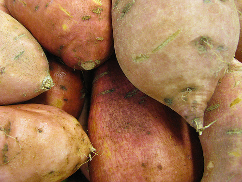 sweet_potatoes_flickr_NatalieMaynor